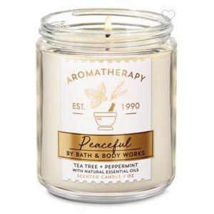 Tea Tree Peppermint Single Wick Candle
